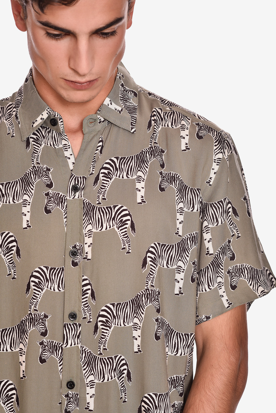 camisa-manga-corta-estampado-rock-cebra